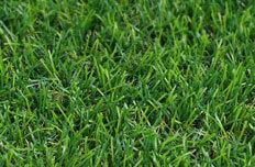 מתקדם דשא סינטטי סיליקון - השוואת מחירים UF-05
